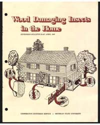 Wood Damaging Insects in the Home, Docum... by James Liebherr