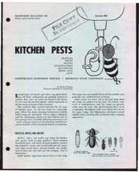 Kitchen Pests, Bulletin 528, Document E5... by Michigan State University