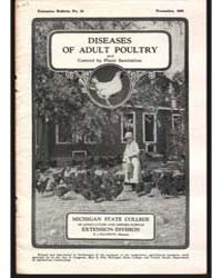 Diseases of Adult Poultry, Document E54 by H. J. Stafseth