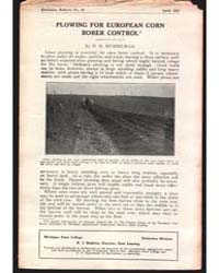 Plowing for European Corn, Document E55 by H. H. Musselman