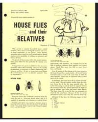 House Flies and Their Relatives, Documen... by Michigan State University