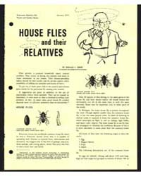 House Flies and Their Relatives, Documen... by Donald C. Crees