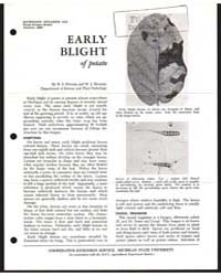 Early Blight of Potato, Document E572 by H. S. Potter
