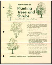 Instructions for Planting Trees and Shru... by Harold Davidson