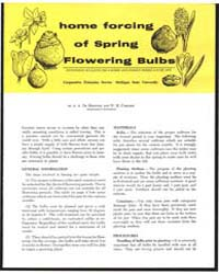 Horne Forcing of Spring Flowering Buibs,... by De Hertogh, A., A.
