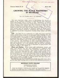 Growing the Black Raspberry in Michigan,... by Teske, A. H.