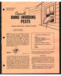 Casual Home-invading Pests, Document E65... by Michael Sllinkle