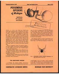 Poisonous Spiders of Michigan, Document ... by Michigan State University