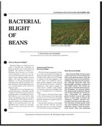 Bacterial Blight of Beans, Document E680... by L. Patrick Hart