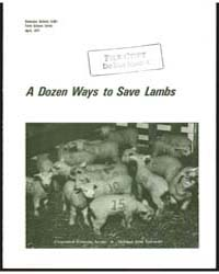A Dozen Ways to Save Lambs, Document E68... by Graydon Blank