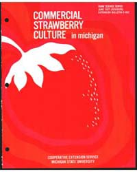 Commercial Strawberry Culture in Michiga... by Michigan State University
