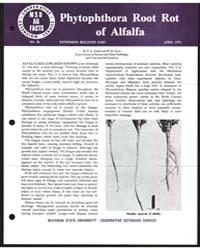Phytophthora Root Rot of Alfalfa, Bullet... by M. B. Tesar
