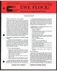 Ewe Flock : Opportunity of Supplemental ... by Michigan State University