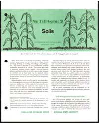 No Till Corn : 3 Soils, Document E906 by L. S. Robertson