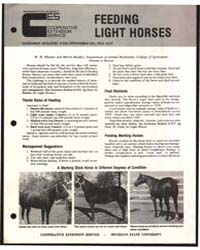Feeds Light Horses, Document E918Print2 by W. H. Pfander