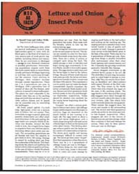 Lettuce and Onion Insect Pests, Document... by Donald Cress