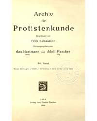 Archiv Fur Protistenkunde, Document Schi... by Fritz Schaudinn