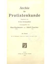 Archiv Fur Protistenkunde, Document Werm... by Fritz Schaudinn