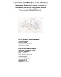 A Stereotaxic Atlas of the Brain of the ... by Nixdorf-bergweiler, Barbara E