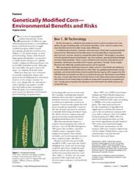 Plos Biology : Genetically Modified Corn... by Gewin, Virginia