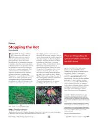 Plos Biology : Stopping the Rot, Volume ... by Nicholls, Henry
