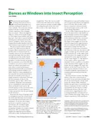 Plos Biology : Dances as Windows Into In... by Chittka, Lars
