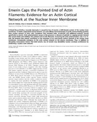Plos Biology : Emerin Caps the Pointed E... by Kirschner, Marc W.