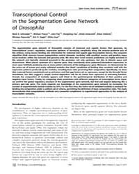 Plos Biology : Transcriptional Control i... by Krasnow, Mark A.