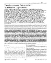 Plos Biology : the Genomes of Oryza Sati... by Bennetzen, Jeff