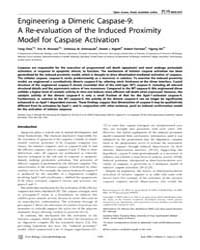 Plos Biology : Engineering a Dimeric Cas... by Wang, Xiaodong