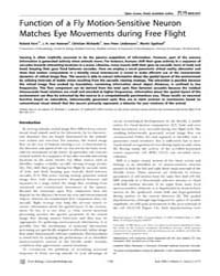 Plos Biology : Function of a Fly Motion-... by Srinivasan, Mandyam V.