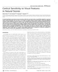 Plos Biology : Cortical Sensitivity to V... by Burr, David C.