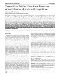 Plos Biology : Two or Four Bristles ; Fu... by Noor, Mohamed