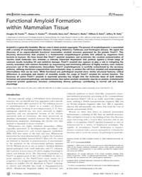 Plos Biology : Functional Amyloid Format... by Weissman, Jonathan