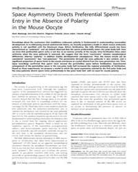 Plos Biology : Space Asymmetry Directs P... by Hamada, Hiroshi