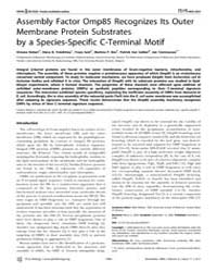 Plos Biology : Assembly Factor Omp85 Rec... by Waldor, Matt