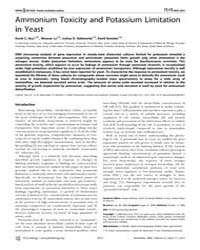 Plos Biology : Ammonium Toxicity and Pot... by Heitman, Joseph