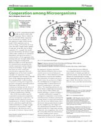 Plos Biology : Cooperation Among Microor... by Wingreen, Ned S.