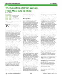 Plos Biology : the Genetics of Brain Wir... by Mitchell, Kevin J.