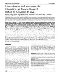 Plos Biology : Intramolecular and Interm... by Kuriyan, John