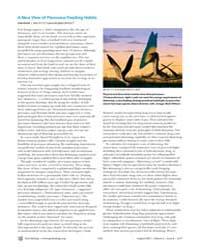 Plos Biology : a New View of Pterosaur F... by Gross, Liza