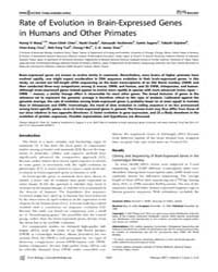 Plos Biology : Rate of Evolution in Brai... by Wolfe, Kenneth H.