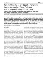Plos Biology : Ten_m3 Regulates Eye-spec... by Harris, William A.
