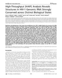 Plos Biology : High-throughput Shape Ana... by Wilkinson Kevin A.