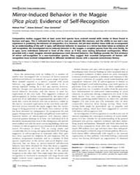 Plos Biology : Mirror-induced Behavior i... by Prior, Helmut