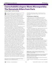 Plos Biology : Caenorhabditis Elegans Me... by Hodgkin, Jonathan