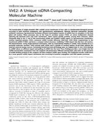 Plos Biology : Vire2 ; a Unique Ssdna-co... by Grange, Wilfried
