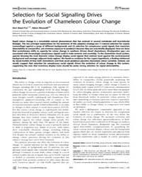 Plos Biology : Selection for Social Sign... by Stuart-fox, Devi