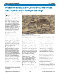 Plos Biology : Protecting Migration Corr... by Berger, Joel