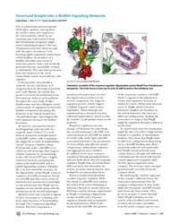 Plos Biology : Structural Insight Into a... by Gross, Liza